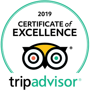 2019 trip advisor certificate of excellence big green - 2019-trip-advisor-certificate-of-excellence-big-green